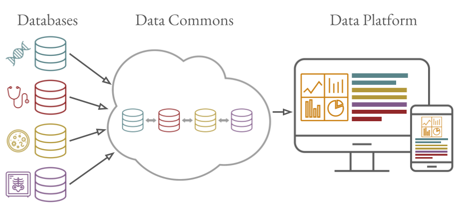 Illustration showing multiple different databases interoperating with each other in a data commons, with data displaying on computer and tablet screens via a data platform